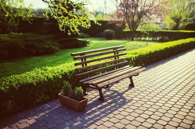 park bench in austin