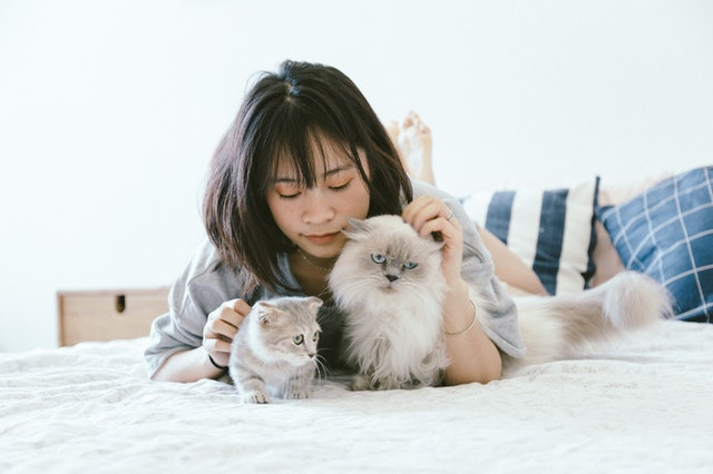 Rent to tenants with pets